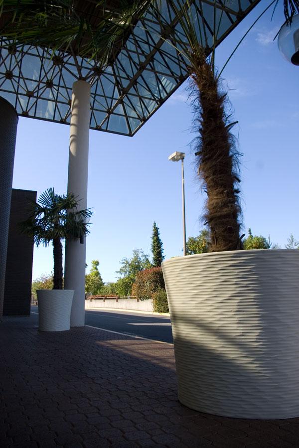 concrete pot palm tree