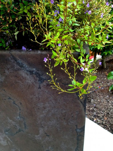 patina-concrete-pot